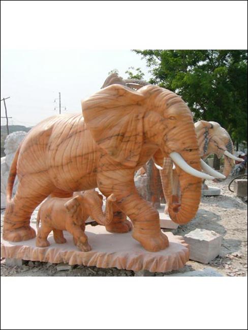 大象 (8)