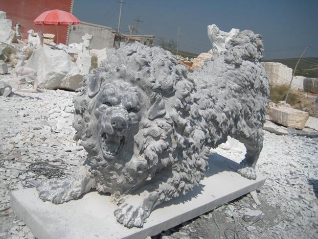 欧式狮子 (14)