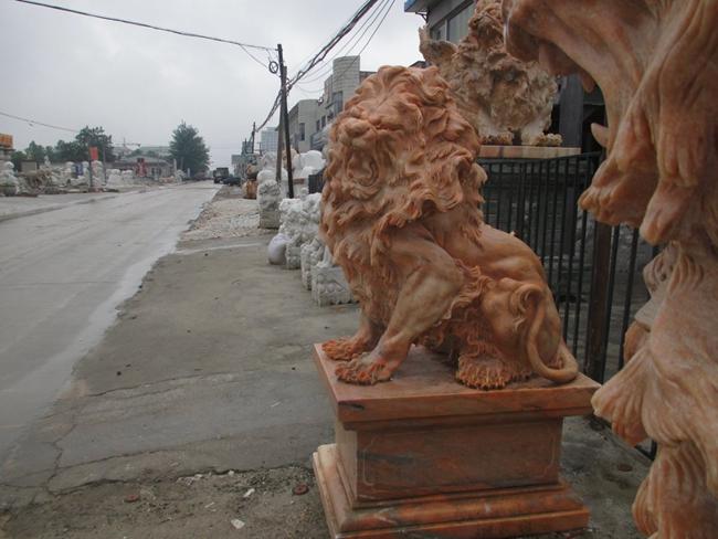 欧式狮子 (7)