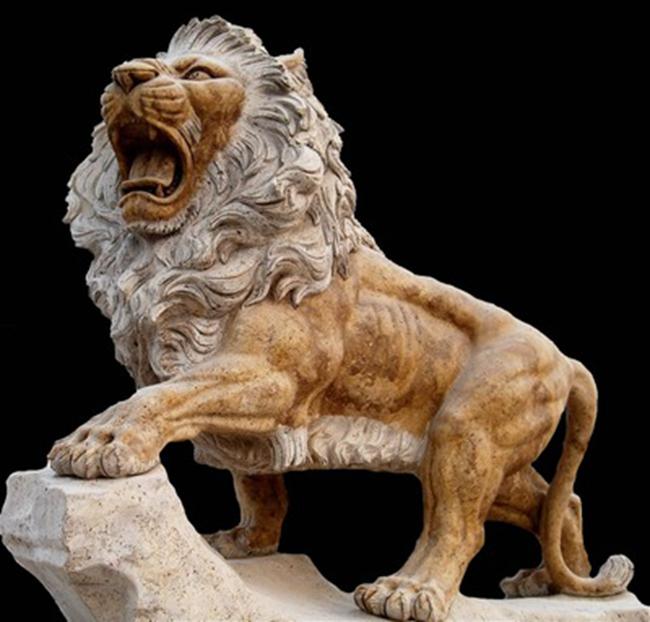 欧式狮子 (3)